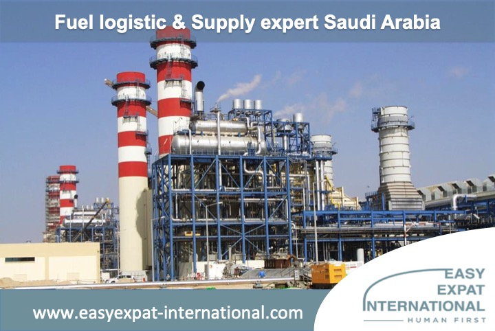 Fuel Logistic and Supply Expert for a mission in Saudi Arabia.