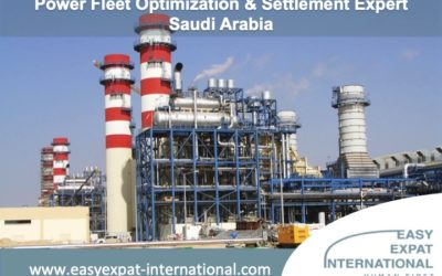 Power Fleet Optimization & Settlement Expert for a mission in Saudi Arabia